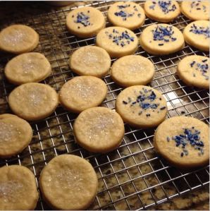Gluten Free Sugar Cookies! Post Thanksgiving Treat!
