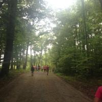 Diva Half Marathon Recap: DC Wine Country