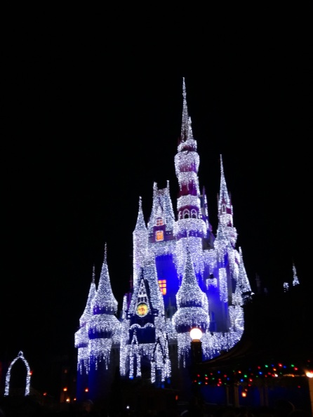 Elsa turned the Castle into ice!! (Also Frozen was EVERYWHERE!)